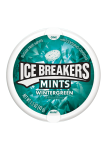 MINTS WINTERGREEN 42G